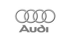 Audi (Ingolstadt)
